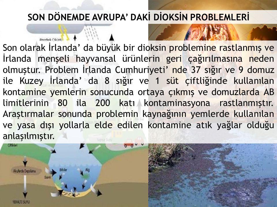 SON DÖNEMDE AVRUPA' DAKİ DİOKSİN PROBLEMLERİ