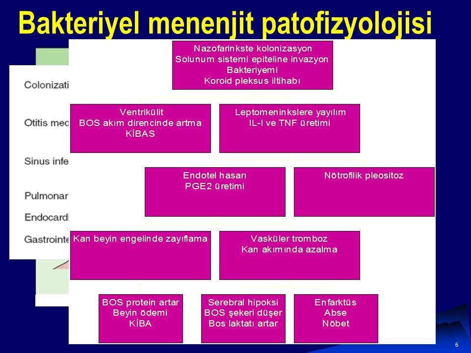 Bakteriyel menenjit patofizyolojisi