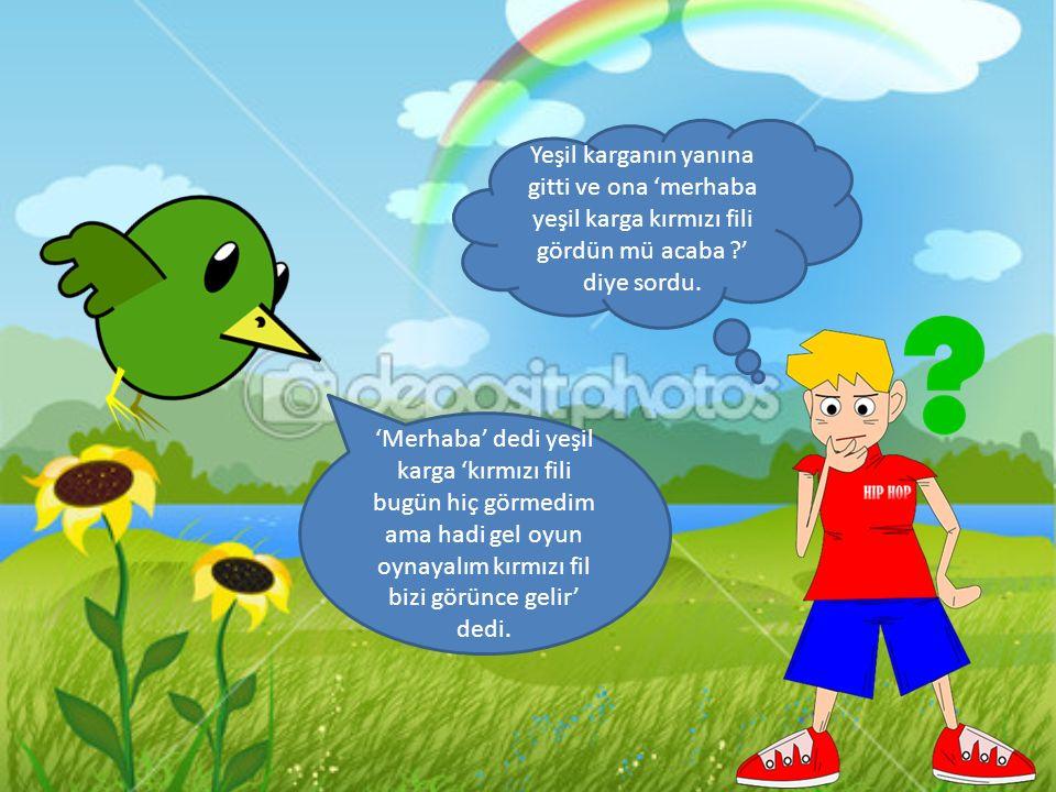 Yeşil karganın yanına gitti ve ona 'merhaba yeşil karga kırmızı fili gördün mü acaba ' diye sordu.