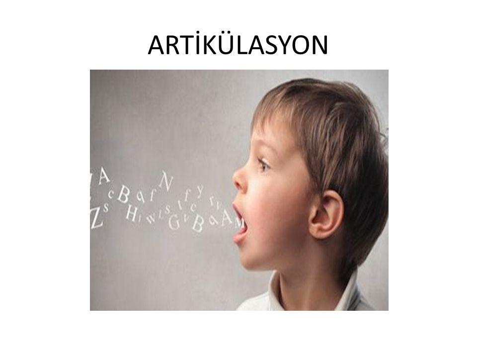 ARTİKÜLASYON