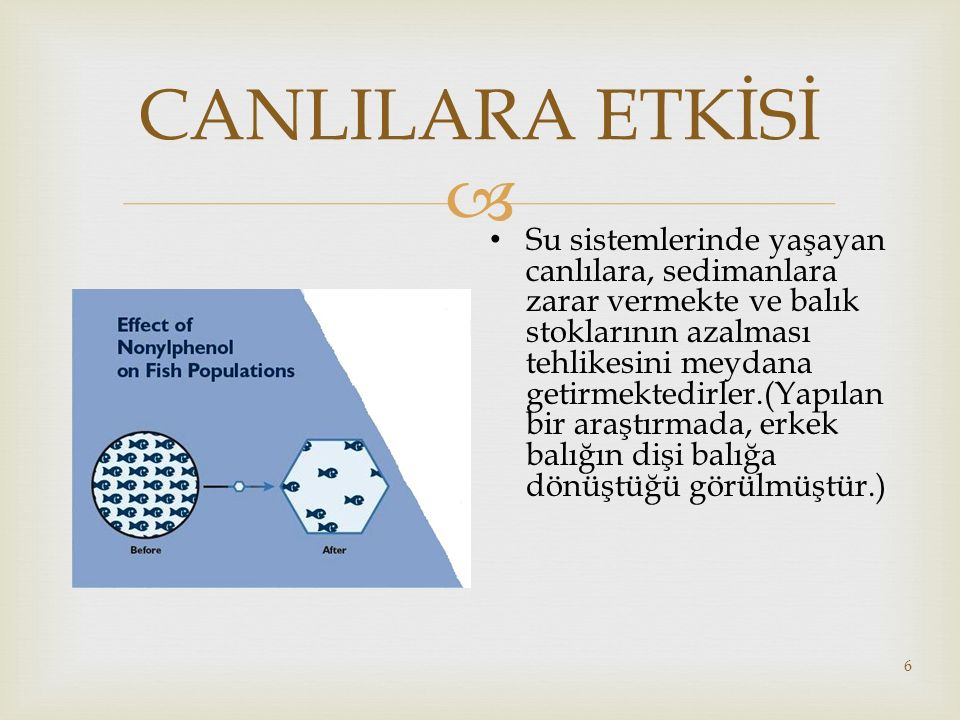 CANLILARA ETKİSİ