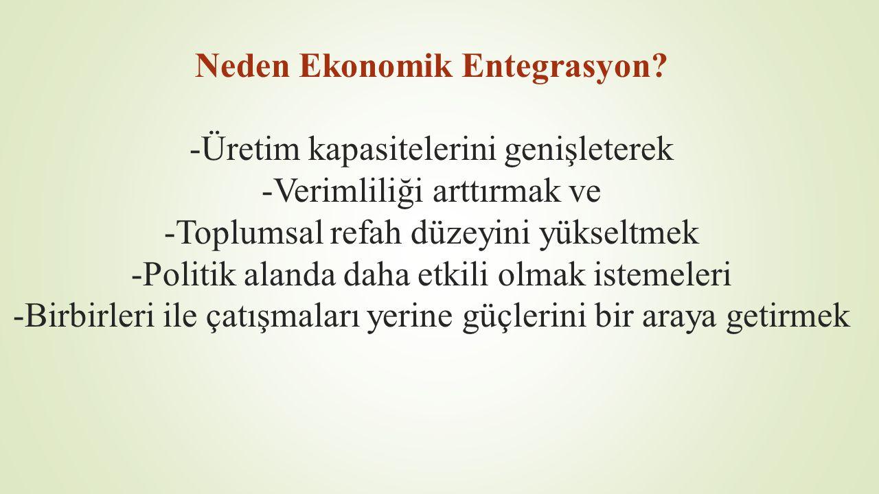 Neden Ekonomik Entegrasyon