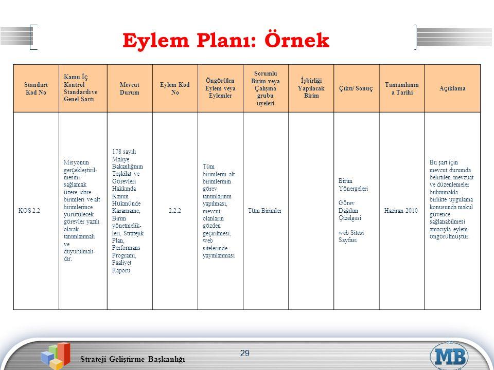 Eylem Planı: Örnek 29 Standart Kod No