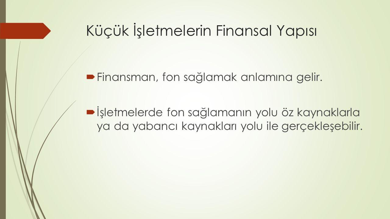 Küçük İşletmelerin Finansal Yapısı