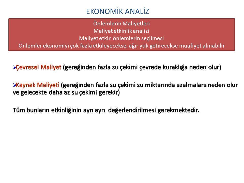 EKONOMİK ANALİZ Önlemlerin Maliyetleri. Maliyet etkinlik analizi. Maliyet etkin önlemlerin seçilmesi.