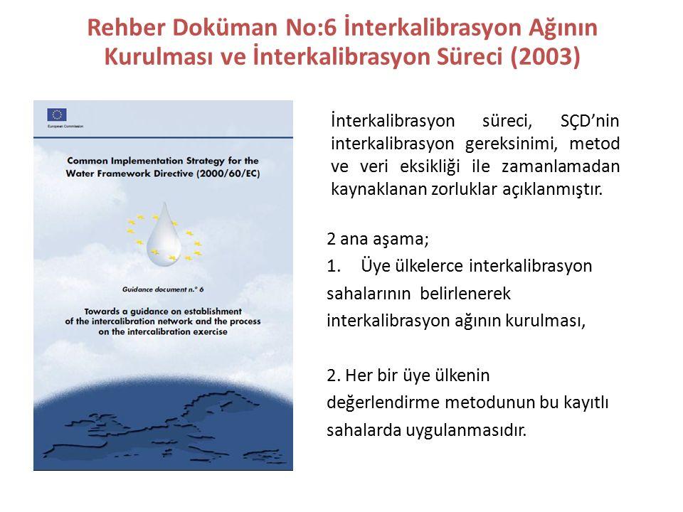Rehber Doküman No:6 İnterkalibrasyon Ağının Kurulması ve İnterkalibrasyon Süreci (2003)