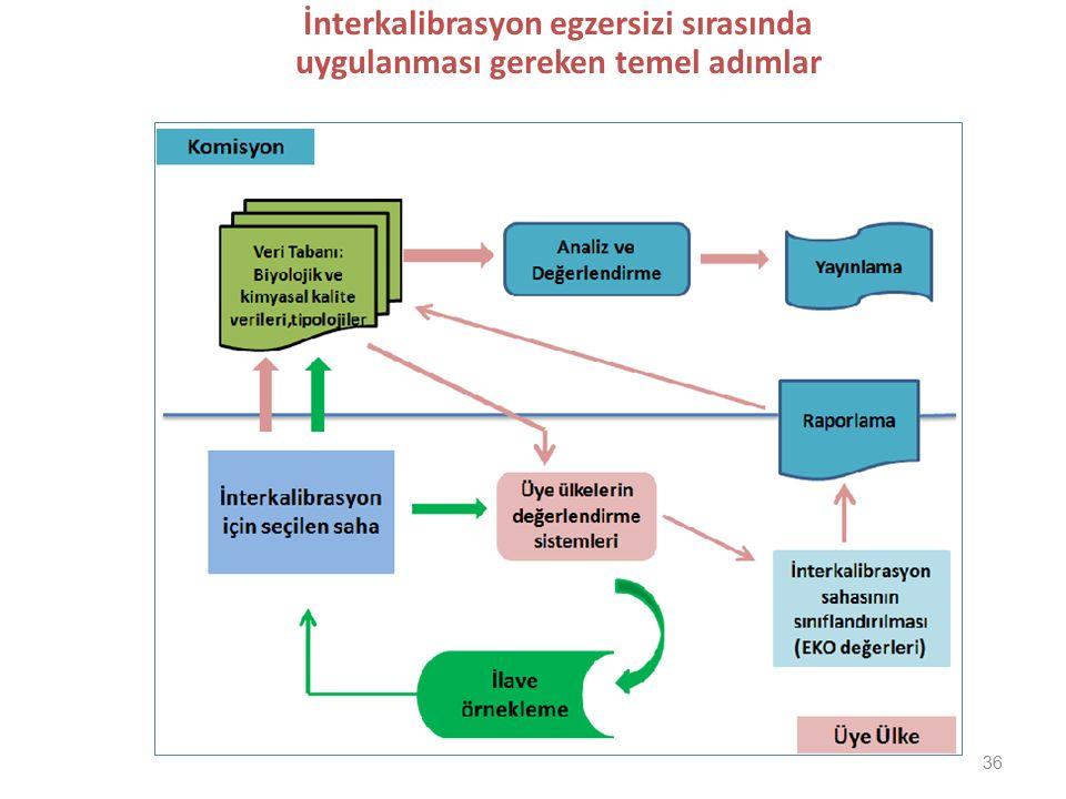 İnterkalibrasyon egzersizi sırasında uygulanması gereken temel adımlar