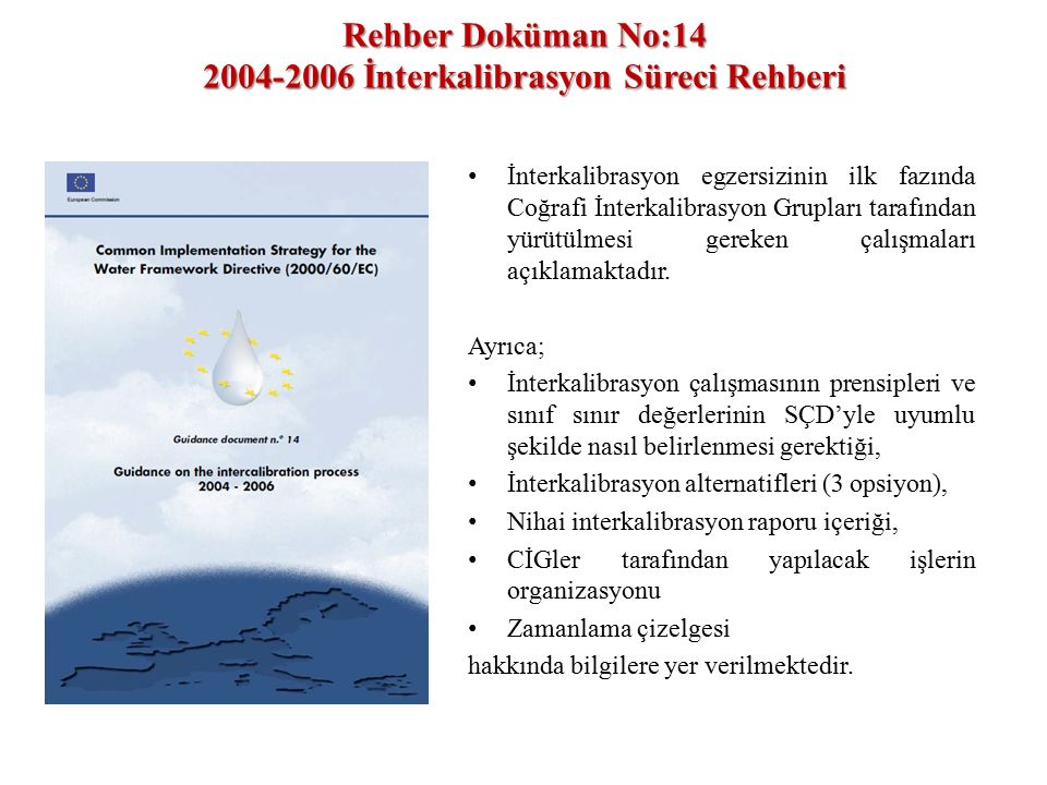 Rehber Doküman No:14 2004-2006 İnterkalibrasyon Süreci Rehberi