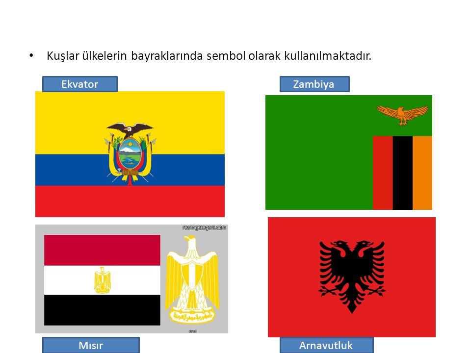 Kuşlar ülkelerin bayraklarında sembol olarak kullanılmaktadır.