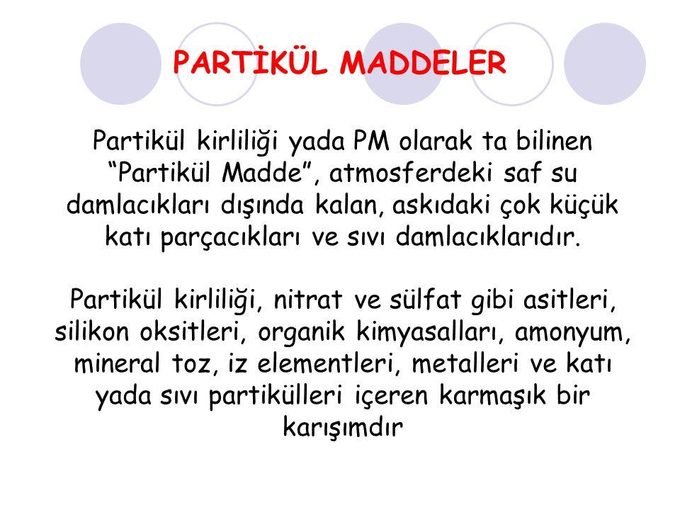 PARTİKÜL MADDELER