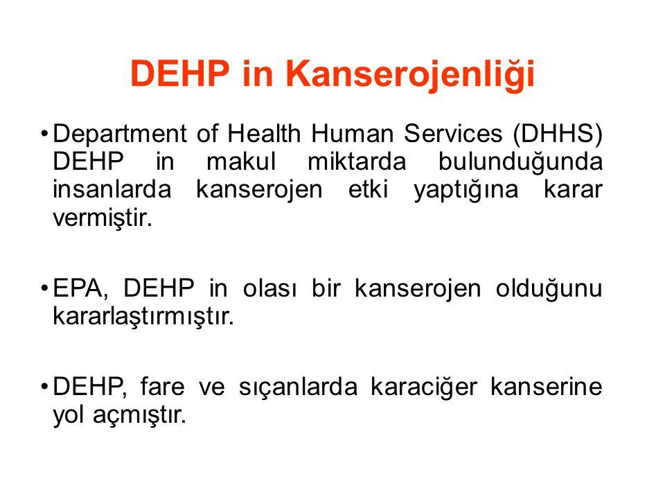 DEHP in Kanserojenliği