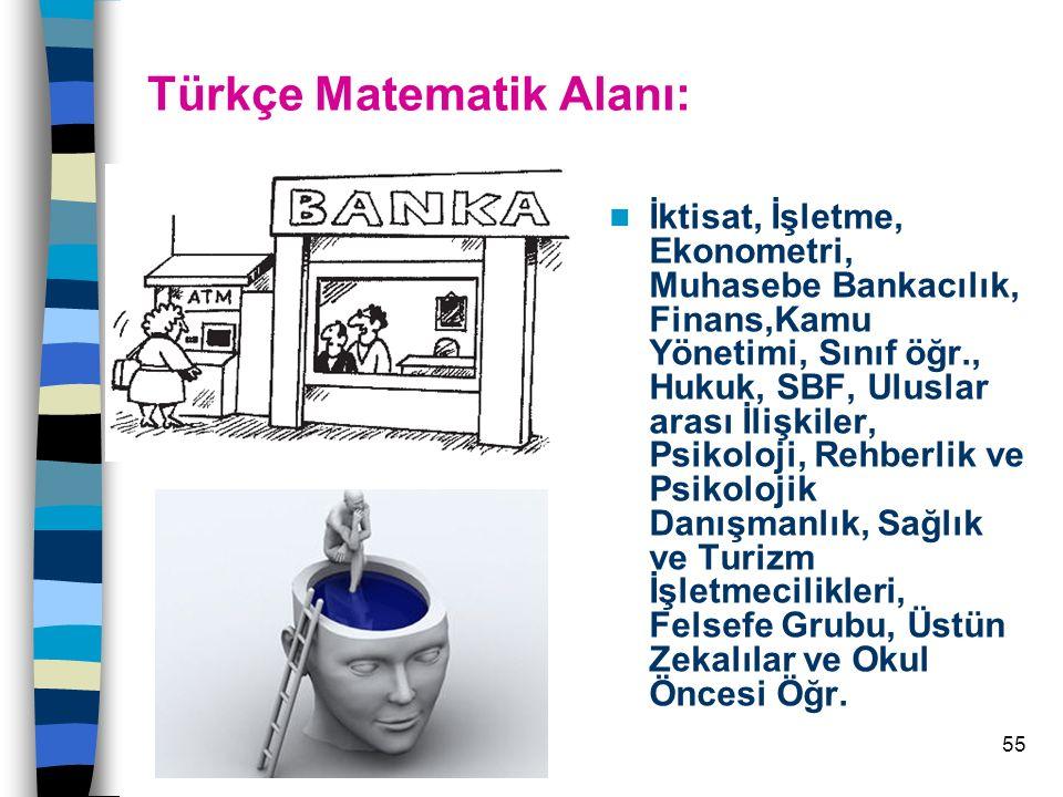 Türkçe Matematik Alanı: