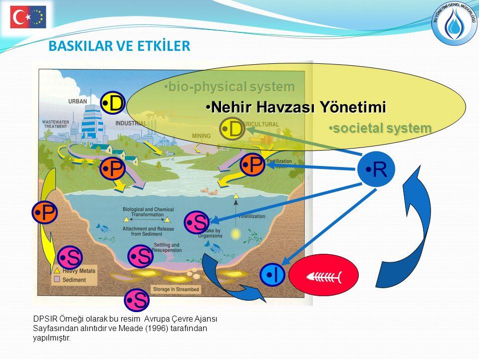 Nehir Havzası Yönetimi
