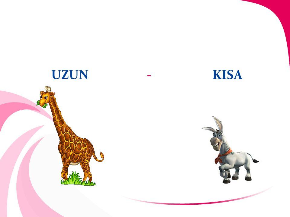 UZUN - KISA
