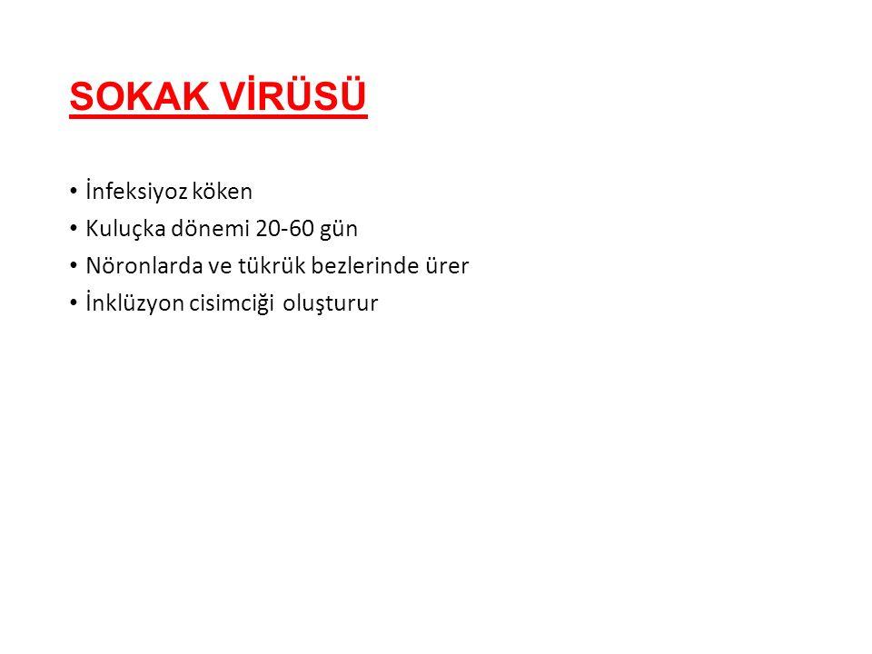 SOKAK VİRÜSÜ İnfeksiyoz köken Kuluçka dönemi 20-60 gün