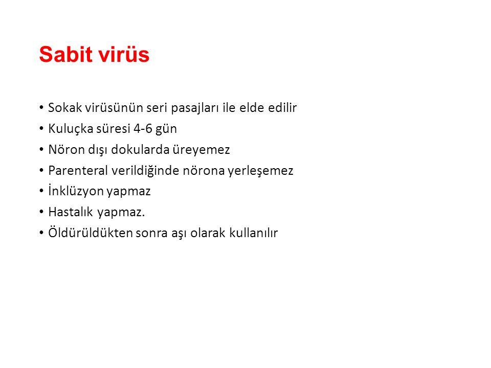 Sabit virüs Sokak virüsünün seri pasajları ile elde edilir