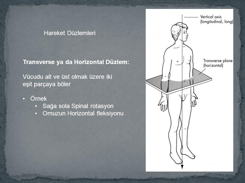 Hareket Düzlemleri Transverse ya da Horizontal Düzlem: Vücudu alt ve üst olmak üzere iki. eşit parçaya böler.