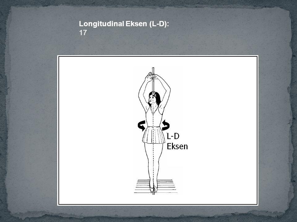 Longitudinal Eksen (L-D):