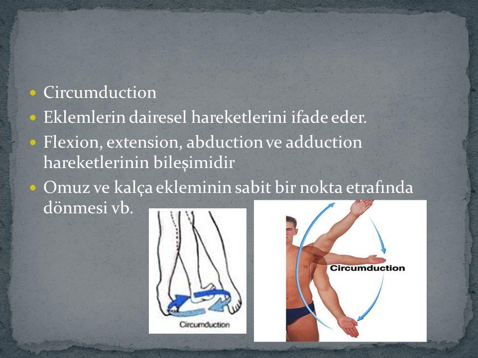 Circumduction Eklemlerin dairesel hareketlerini ifade eder. Flexion, extension, abduction ve adduction hareketlerinin bileşimidir.