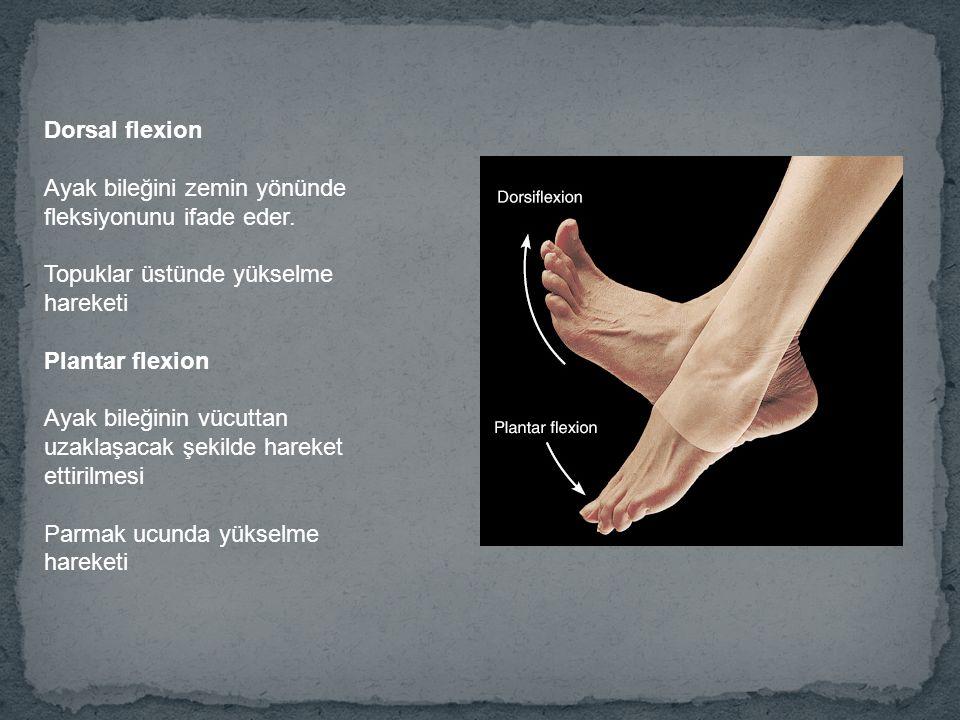 Dorsal flexion Ayak bileğini zemin yönünde fleksiyonunu ifade eder. Topuklar üstünde yükselme hareketi.