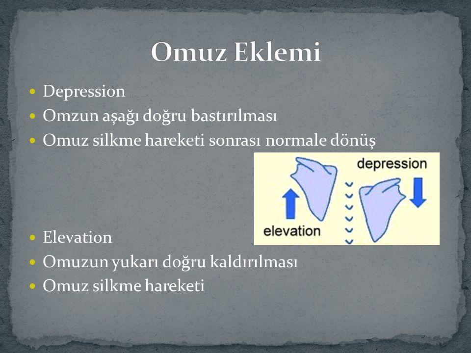 Omuz Eklemi Depression Omzun aşağı doğru bastırılması