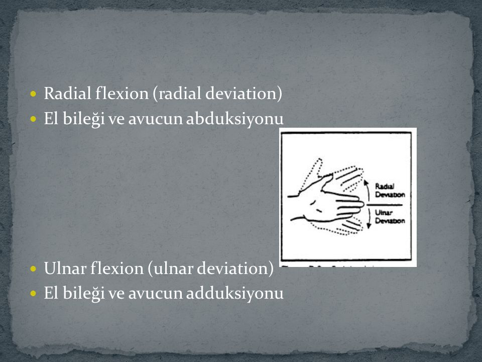 Radial flexion (radial deviation)