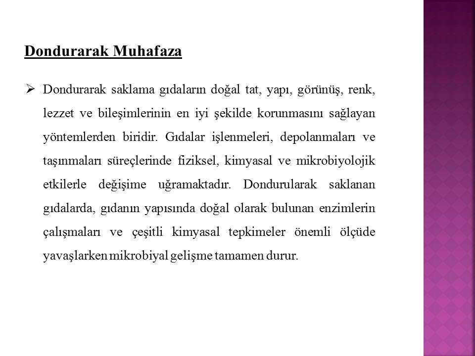 Dondurarak Muhafaza
