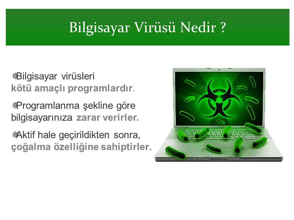 Bilgisayar Virüsü Nedir