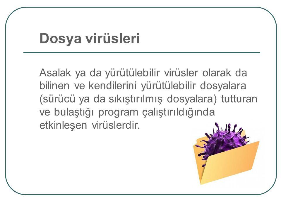 Dosya virüsleri