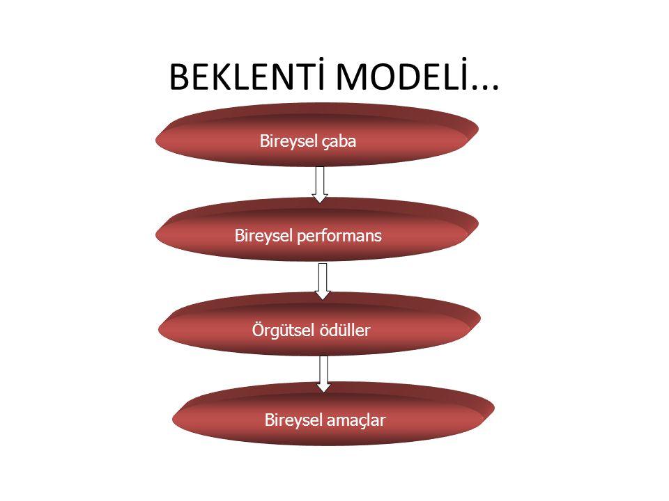 BEKLENTİ MODELİ... Bireysel çaba Bireysel performans Örgütsel ödüller