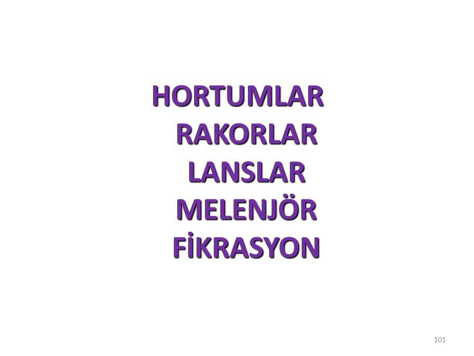 HORTUMLAR RAKORLAR LANSLAR MELENJÖR FİKRASYON