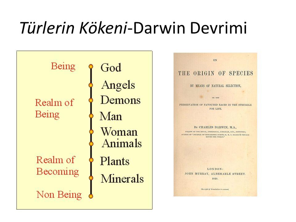 Türlerin Kökeni-Darwin Devrimi
