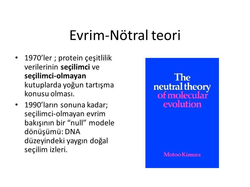 Evrim-Nötral teori 1970'ler ; protein çeşitlilik verilerinin seçilimci ve seçilimci-olmayan kutuplarda yoğun tartışma konusu olması.