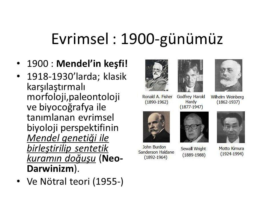 Evrimsel : 1900-günümüz 1900 : Mendel'in keşfi!