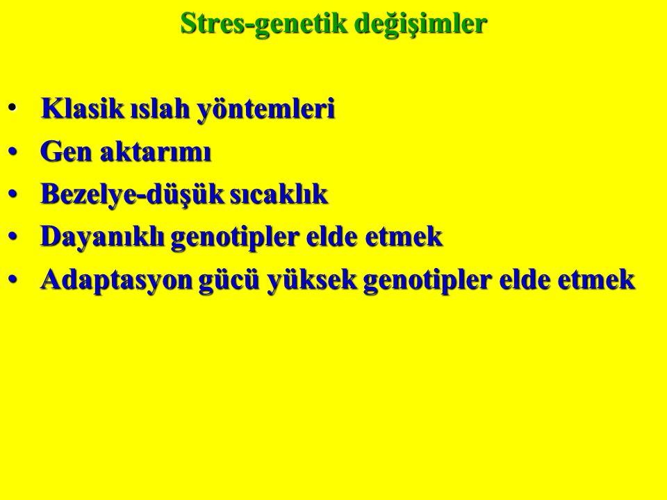 Stres-genetik değişimler