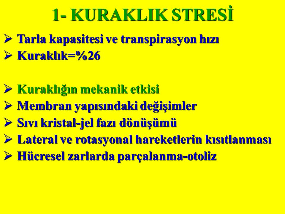 1- KURAKLIK STRESİ Tarla kapasitesi ve transpirasyon hızı Kuraklık=%26