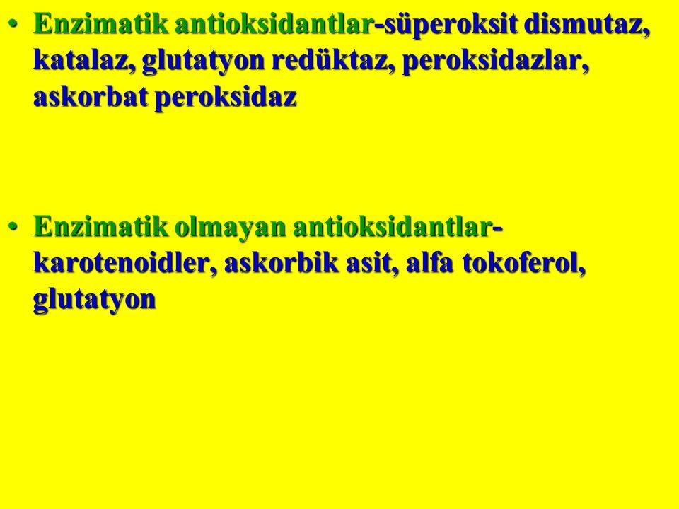 Enzimatik antioksidantlar-süperoksit dismutaz, katalaz, glutatyon redüktaz, peroksidazlar, askorbat peroksidaz