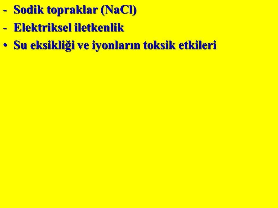 Sodik topraklar (NaCl)