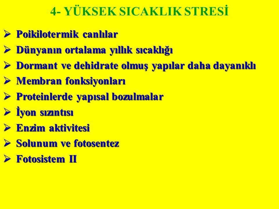4- YÜKSEK SICAKLIK STRESİ