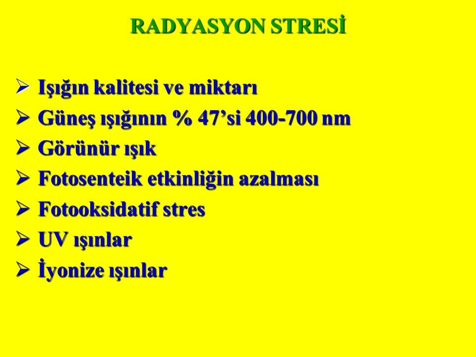 RADYASYON STRESİ Işığın kalitesi ve miktarı. Güneş ışığının % 47'si 400-700 nm. Görünür ışık. Fotosenteik etkinliğin azalması.