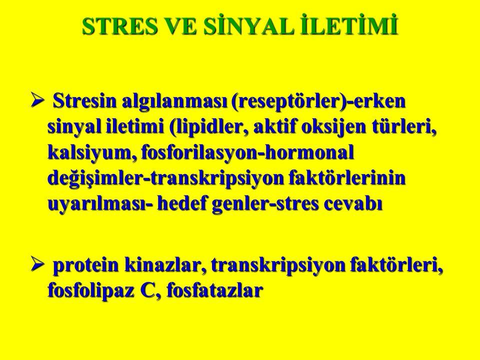 STRES VE SİNYAL İLETİMİ