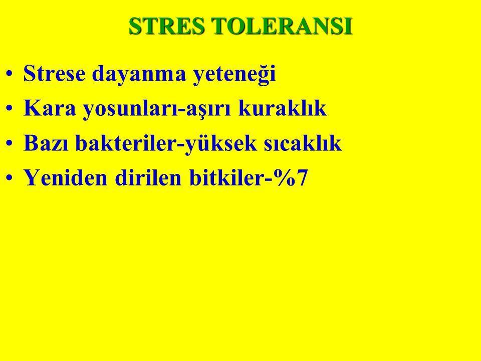 STRES TOLERANSI Strese dayanma yeteneği. Kara yosunları-aşırı kuraklık. Bazı bakteriler-yüksek sıcaklık.