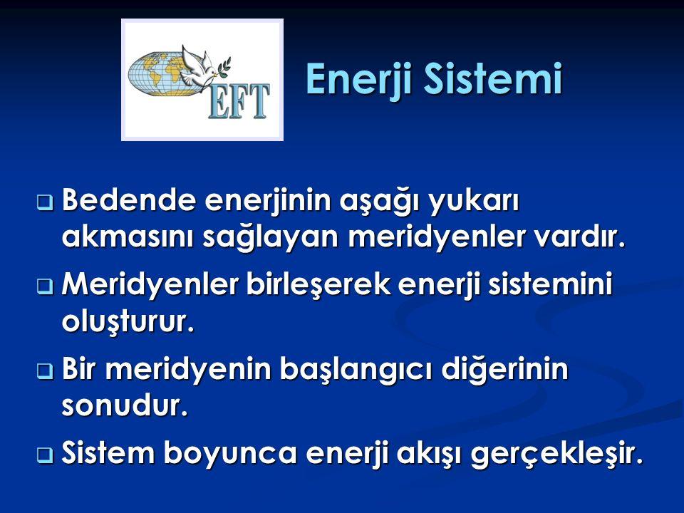 Enerji Sistemi Bedende enerjinin aşağı yukarı akmasını sağlayan meridyenler vardır. Meridyenler birleşerek enerji sistemini oluşturur.