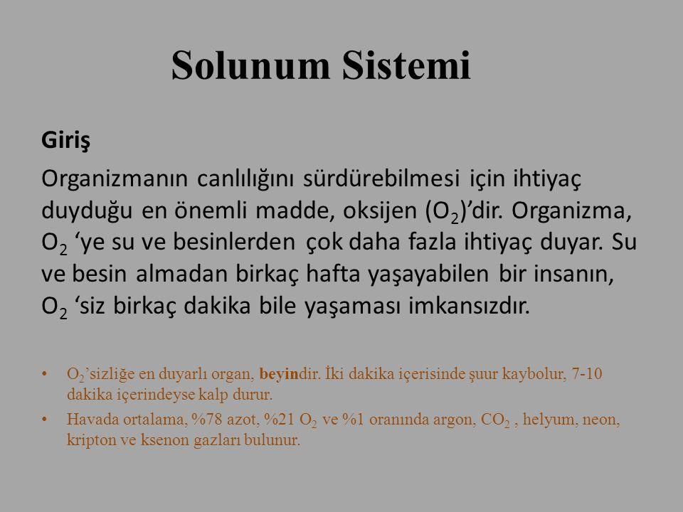 Solunum Sistemi Giriş.
