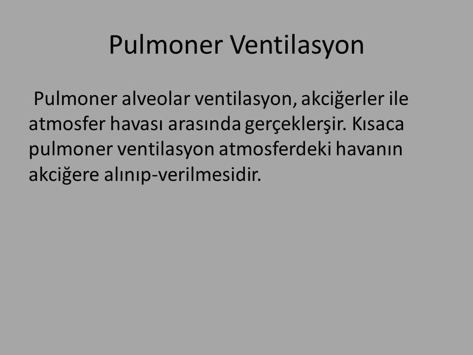 Pulmoner Ventilasyon