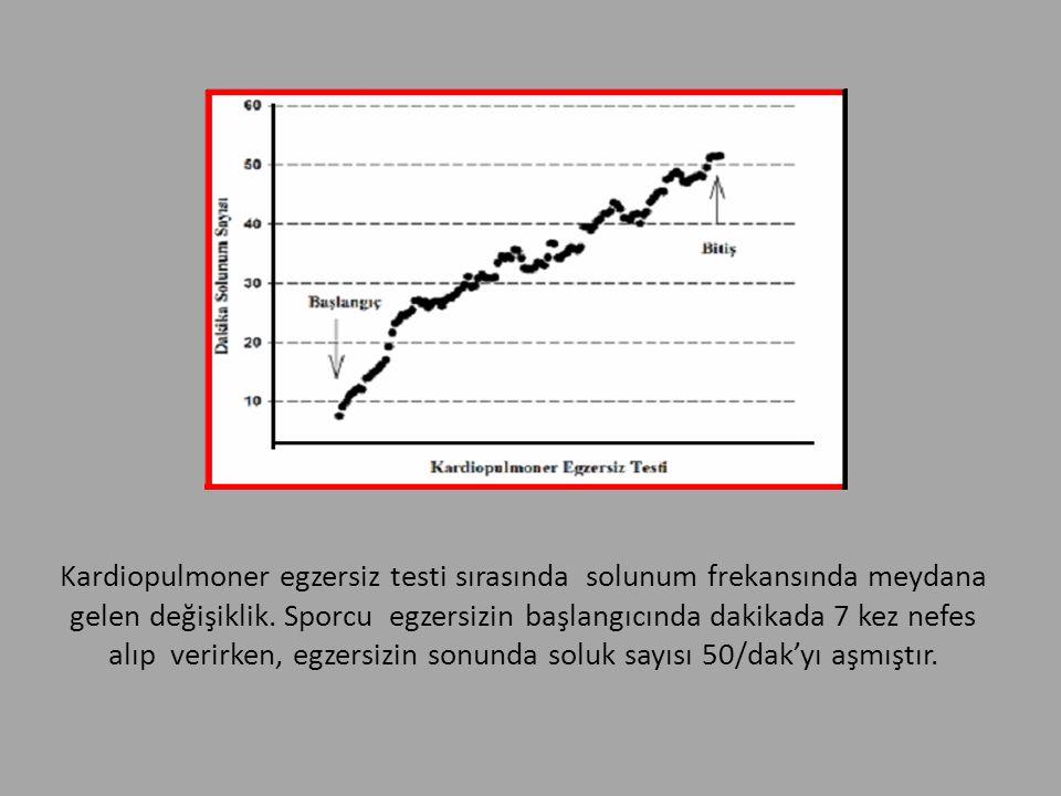Kardiopulmoner egzersiz testi sırasında solunum frekansında meydana gelen değişiklik.