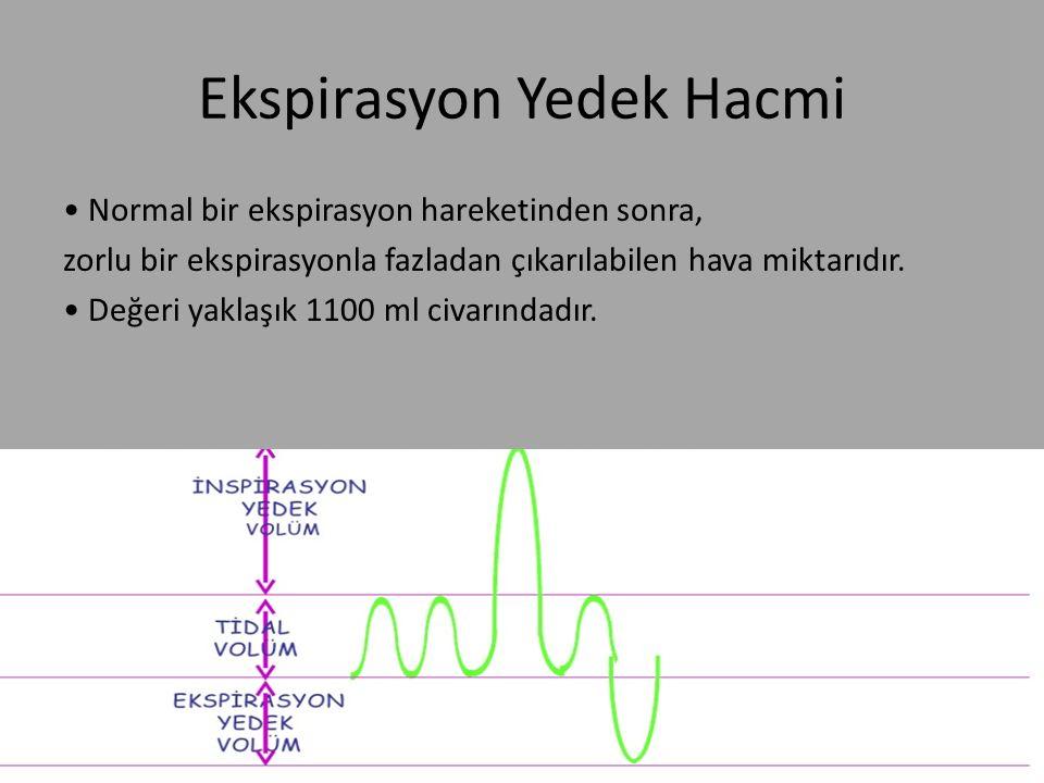 Ekspirasyon Yedek Hacmi
