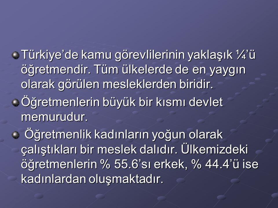 Türkiye'de kamu görevlilerinin yaklaşık ¼'ü öğretmendir