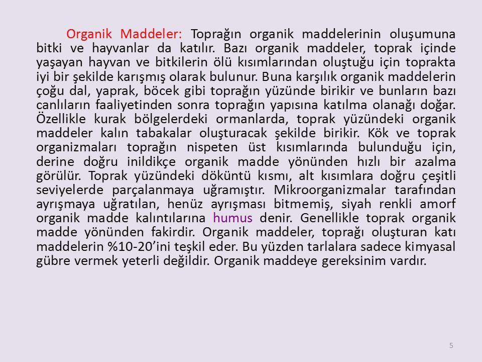 Organik Maddeler: Toprağın organik maddelerinin oluşumuna bitki ve hayvanlar da katılır.