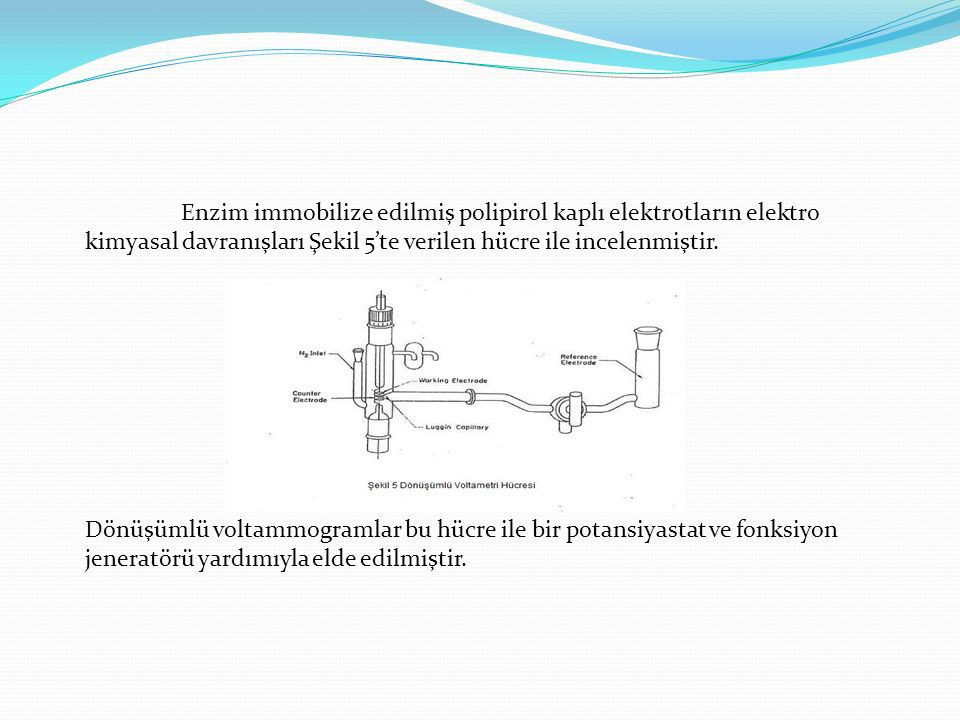 Enzim immobilize edilmiş polipirol kaplı elektrotların elektro kimyasal davranışları Şekil 5'te verilen hücre ile incelenmiştir.